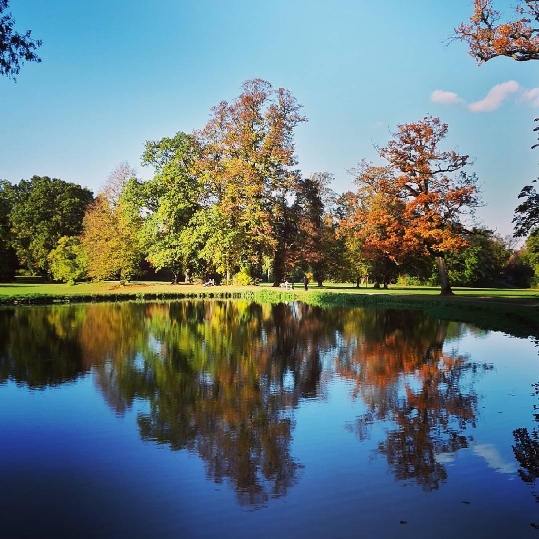 Was für ein schöner Herbsttag im Schönbusch