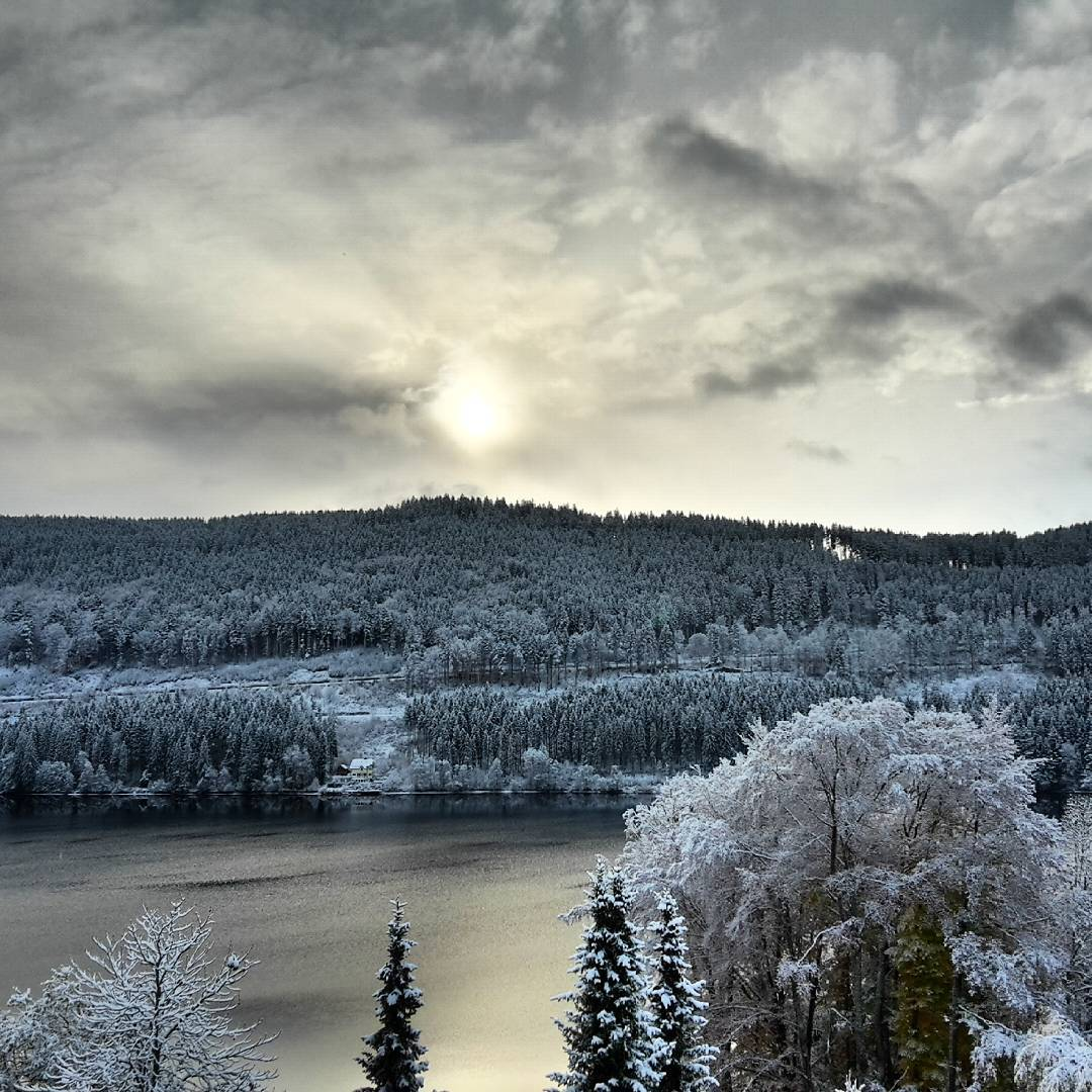Snowy Black Forest sunrise